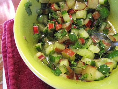 Spicy Chicken with Rhubarb Cucumber Salsa
