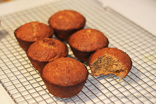 Applesauce Oat Muffins plus Adventures with Gevalia Coffee