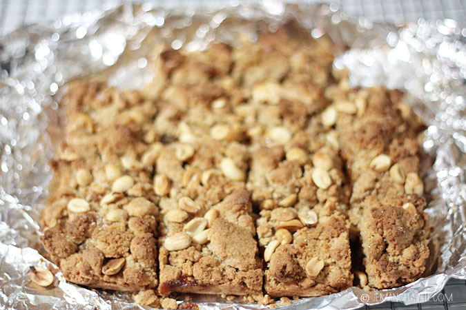 Salted Peanut Butter and Orange Marmalade Bars