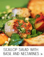 Scallop Salad with Corn and Nectarines